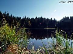 Herbst am Vogtlandsee (flieger1964) Tags: lake germany landscape deutschland see herbst natur landschaft wald vogtland vogtlandsee