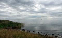 Denmark, Bork Havn (noenkelMi) Tags: sea seascape clouds strand landscape denmark wolken zee danmark landschap denemarken borkhavn