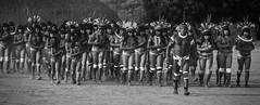 Kuikuro (guiraud_serge) Tags: brazil portrait brasil amazon indian tribe ethnic indien matogrosso indio labret brésil tribu amazonie amazone forêttropicale ethnie kayapo kuikuro metuktire plateaulabial hautxingu parcduxingu sergeguiraud artducorps ornementcorporel