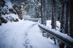 Snow (Dorian.B34) Tags: winter snow france nature beautiful french nikon hiver neige mende d5200