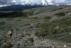 Along the trail with Mt Ruapehu, 1985 (NettyA) Tags: newzealand mountains film clouds 35mm hiking slide hike nz tongarironationalpark northisland kodachrome 1985 tramping tramp daytwo scannedslide mtruapehu mtngauruhoe