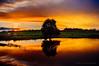 Coomunga, Eyre Peninsula - Fuji X100 (Robert Lang Photography) Tags: camera sunset sun color colour reflection reflections landscape photography photo warm fuji warmth australia handheld fujifilm southaustralia x100 pointandclick eyrepeninsula fujix100 coomunga