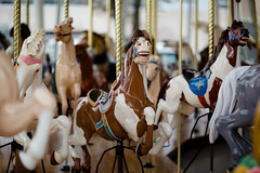 1B5A5769.jpg (invertalon) Tags: park ohio horse beach canon photography cleveland reserve grand carousel western historical 5d opening euclid society reopening universitycircle 112314 5d3 5dmarkiii invertalon 11232014