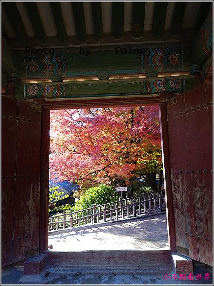 慶州佛國寺 (67).JPG