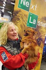 Finalist The Next Lassie dag 1: Saga (Svenska Mssan) Tags: gteborg agility saga mydog svenskamssan sandhem mittelspitz hundmssan hundmssa thenextlassie mydog2015 maudosbeck
