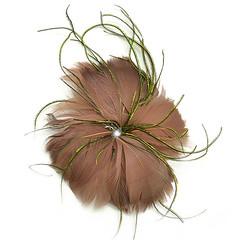 Feather Hair Clip 2D