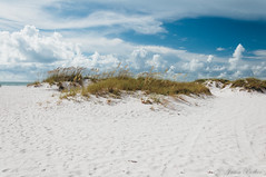 Clearwater Beach (J. Parker Natural Florida Photographer) Tags: summer sun beach sunshine sand nikon tampabay florida sandy dune sunny clearwaterbeach polarizer clearwater gulfcoast centralflorida d90 nikond90 vsco vscofilm