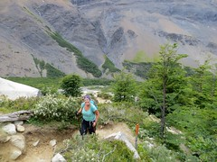 Torres del Paine-30