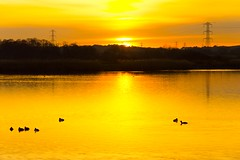 Sunset at Longham North Reservoir, Dorset (JackPeasePhotography) Tags: sunset lake water river nikon reservoir dorset dslr stour 2015 longham