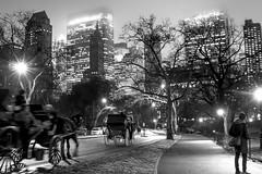 _MG_2555 (crimaraffi) Tags: white newyork black night centralpark carrozza bianco nero notte