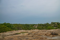 Suedafrika-25 (Lukas P Schmidt) Tags: nationalpark walk krugerpark