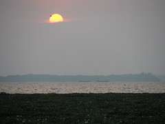 Indien - Kummarakom (ulfinger) Tags: see wasser himmel kerala landschaft indien backwaters kanle kummarakom