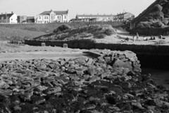 Seaton Sluice, Northumberland, England, UK, 5/2016 (SteveT0191) Tags: uk england bw flickr northumberland seatonsluice geolocated