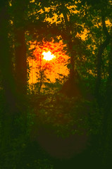 Darkness, becoming sunrise.... (tomk630) Tags: light usa nature sunrise virginia waiting darkness