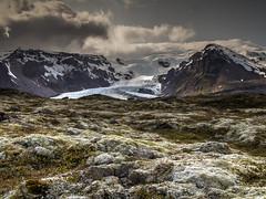 Kvíárjökull foreland