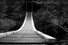 BW Bridge (tm1126) Tags: bridge blackandwhite bw outdoors nikon fineart suspended monocrome puertoblest d7100 seleccionpuertoblest