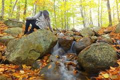 Immersed in Foliage (Jon. Li) Tags: park waterfall state folliage