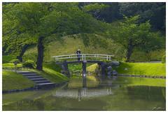 Koishikawa Krakuen garden, Tokyo (290516) (n._y_c) Tags: green water japan garden landscape tokyo fuji x waterscape xseries fujifim xt1 koishikawakrakuen xf1855