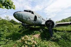 Lost (www.nicolabertellotti.com) Tags: lost airplane forgotten abbandono abandoned abbandonato abbandonata aereo guerra war sky urbex