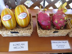 O.C. Fair 2016: California Rare Fruit Growers exhibit - Korean Melon, Dragon Fruit (Daralee's Web World photos) Tags: ocfair2016 orangecountyfairgrounds costamesaca californiararefruitgrowers koreanmelon dragonfruit