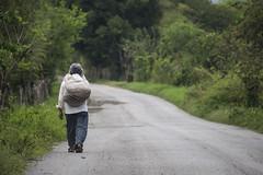 caminante (cris.roro) Tags: caminante huasteca huichihuayan sanluispotosi mexico walking worker
