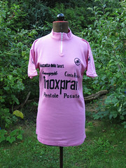 Inoxpran Maglia Rosa Battaglin 1981 (akimbo71) Tags: maglia maillot cycling jersey fahrradtrikot