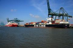 PSA Europa Terminal DST_4955 (larry_antwerp) Tags: psa psaterminal container atacama ccni nyk nykdeneb antwerp antwerpen       port        belgium belgi          schip ship vessel        schelde