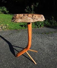 Yellow Cedar Burl Table (How.I.E) Tags: old wood stain side knot live edge craft rustic custom one kind hand made stem feet legs make create special west coast reflect oil tung three post tripod