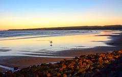 Lahinch 4 (renata_souza_e_souza) Tags: ireland september 2016 trip travel beach lahinch lehinch sunset