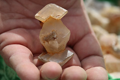 Kim Hill's Calcite 7358 (Memphis Geology) Tags: calcite midwestlimecompanymine batesville arkansas memphisarchaeologicalandgeologicalsociety september 2016 fieldtrip