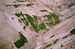 zigzag canyon (adie reed) Tags: zigzagcanyon mthood oregon film 35mm leicaminilux