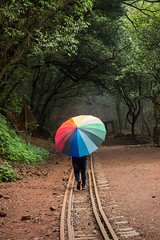 Matheran-5557 (Satish Chelluri) Tags: satishchelluri satishchelluriphotography matheran maharastra umbrella mansoon