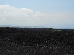 Old Lava Field (jimmywayne) Tags: hawaii hawaiicounty lava regrowth landscape oceanview kau