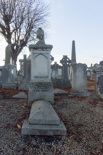 Mount Jerome Cemetery & Crematorium is situated in Harold's Cross Ref-100404