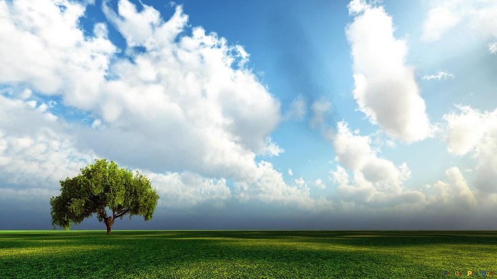 Chiêm Ngưỡng Vẻ Đẹp Phong Cảnh Thiên Nhiên Kỳ Ảo