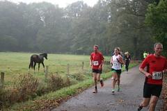 IMG_5263 (De Herfstloop Twente) Tags: de running ac enschede twente hardlopen rudie 2014 boekelo lonneker fotograaf tion glanerbrug olthof usselo herfstloop