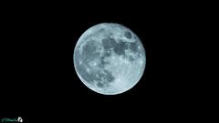 Moon - 11/07/2014 (Zeus Optics) Tags: moon night aperture nikon exposure darkness time astro fullmoon iso nighttime astrophotography 70300mm tamron exposurecompensation zoomlens fstop d3200