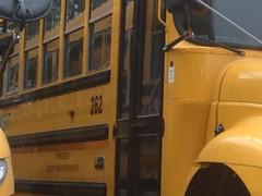 IMG_6836 (Alex Ratkovits) Tags: newyork pennsylvania newyorkstate schoolbus unitedschooldistrict mountaintransitschoolbus mountaintransit vermontschoolbus coudersportareaschooldistrict kempsbusservice