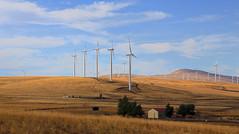 Wind Farm (Team Hymas) Tags: river washington wind columbia goldendale turbines