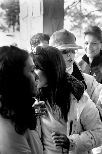 AT THE RACES , 2008_73