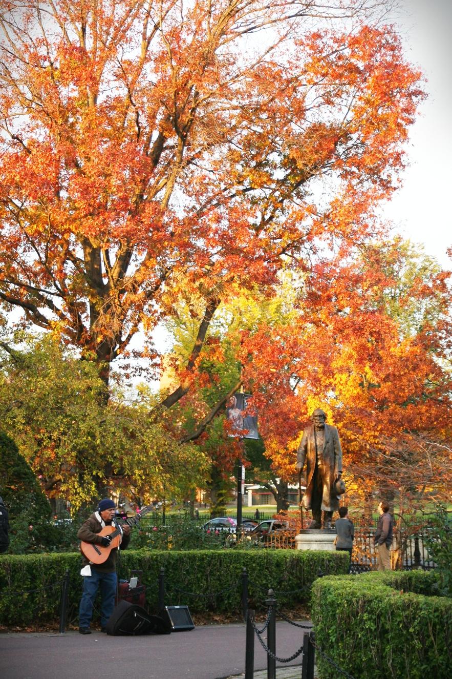 boston-common-public-garden-autumn-14