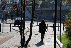 Walking in Sunshine (Rick & Bart) Tags: people belgium candid strangers streetphotography personnes luik lige everydaypeople lttich ligeguillemins gareligeguillemins rickbart rickvink
