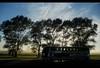 Old (Wild Nikon) Tags: old travel sky nikon s3000 2011