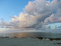 Going wild (Antropoturista) Tags: italy beach clouds landscape sicily trapani