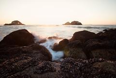 Sutro Splash (redblur) Tags: sanfrancisco light sunset sun beach san francisco rocks waves nd bayarea sutrobaths mussels