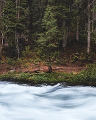 Day 4 (m0r4c0) Tags: green water bells colorado long exposure hand maroon flowing held aspen