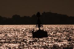 IMG_3338 (karina vitanova) Tags: winter sea tunisia