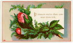 If Sinners Entice Thee Consent Thou Not (Alan Mays) Tags: ephemera religiouscards bibleversecards cards religiousephemera paper printed religion religious bibleverses proverbs proverbs110 sinners entice consent deny flowers roses plants leaves pink green red gold illustrations borders victorian 19thcentury nineteenthcentury antique old vintage typefaces type typography fonts