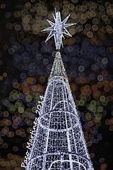 Feliz Navidad - Merry Christmas (paco.ghun) Tags: madrid christmas copyright holiday navidad pentax bokeh estrela fiestas christmastree christmascards happyholidays merrychristmas greeting k20 feliznavidad felicitacion arboldenavidad felicesfiestas k20d felicitacinnavidea pacoghun pacomartinezgonzalez