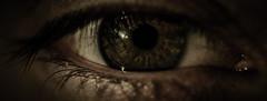 The eyes have it... (jimbob195) Tags: iris portrait eye up dark moody close eyelashes eyelash processed pupil